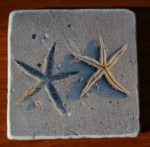 Double Starfish