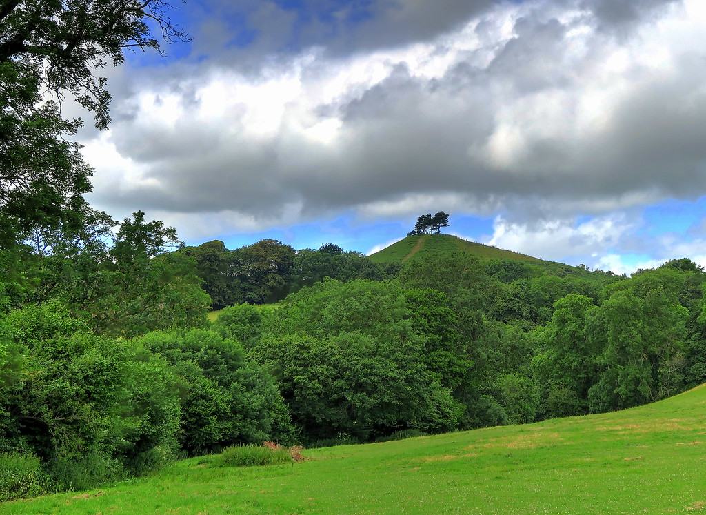 As we aproached Symondsbury, Colmer's Hill comes into view again - not long until lunch!