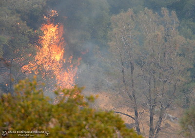Flames are seen as the Stoney Fire burns in Upper Bidwell Park seen from Hwy. 32 near Chico, Calif. Friday July 13, 2018.  (Bill Husa -- Enterprise-Record)