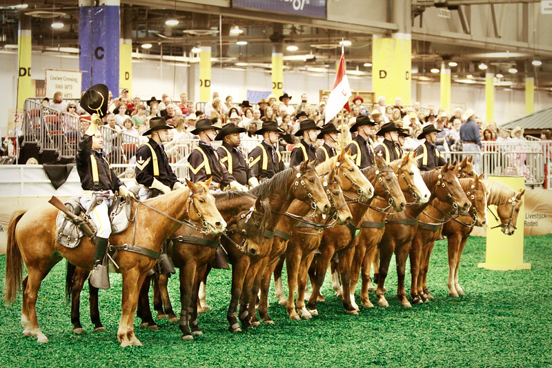 1st Cavalry Horse Detachment