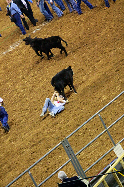 Armed Forces Appreciation Day at the Houston Livestock Show & Rodeo, calf scramble
