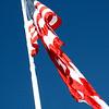 10May5 LSHF Flag Raising Ceremony The Flag 011
