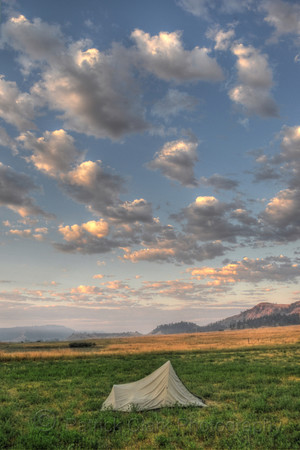 Home on the range, Montana