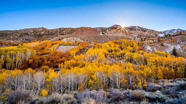 Fall Colors in Eastern Sierras - Bishop, CA