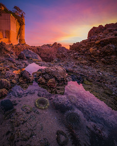 Astro-Landscapes-2014-016