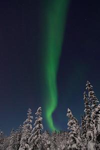Vertical Aurora