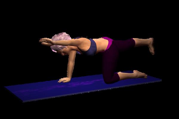 Quadruped, Alternate Arm and Opposite Leg Raise