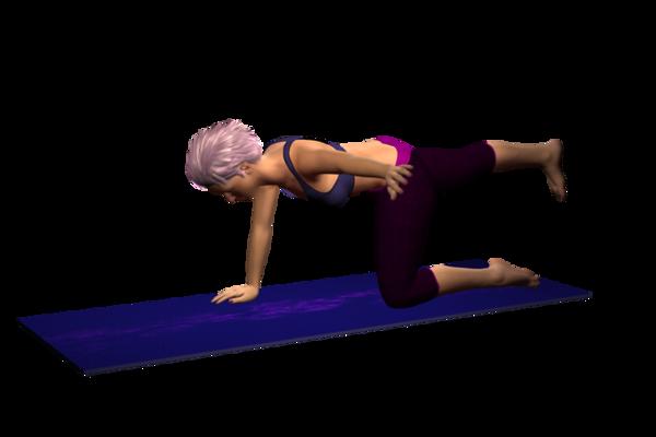 Quadruped, Alternate Arm Horizontal and Opposite Leg Raise or Kicks