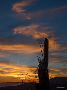 Last Night's Sunset-250218
