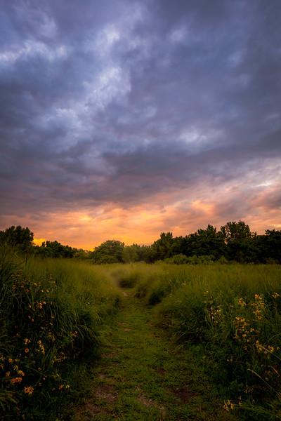 Cleveland Lakefront Nature Preserve