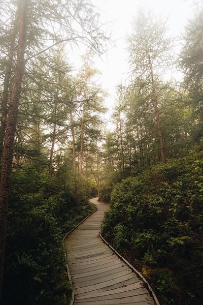 Kent Bog State Nature Preserve