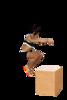 Box Jump 2