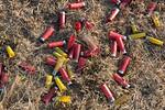 Pile of Spent Shotgun Shells 2