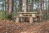 Forest Picnic Table