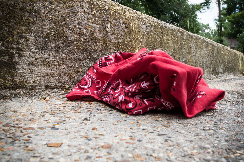 Lost Red Bandanna