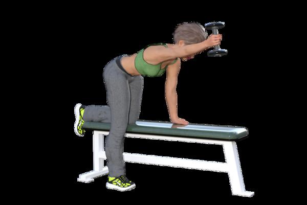 Shoulder Flexion (at 90 degrees abduction)