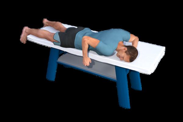 Prone Posterior Shoulder Strengthening