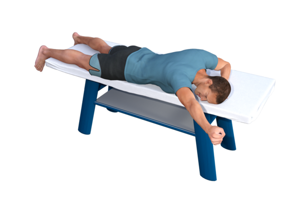 Prone Posterior Shoulder Strengthening