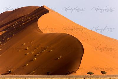 Dune 45- Namib-Naukluft Park, Namibia