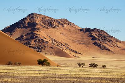 Dune Landscape- Namib-Naukluft Park, Namibia