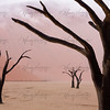 Pastels in the Desert- Deadvlei, Nambia