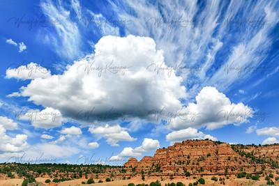 Bowl Canyon- Navajo Nation, AZ