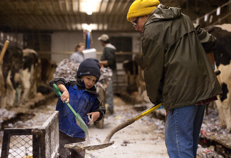 Grandson Landon Rossman and grandmother Barb Rossman work together in the barn during evening milking on Feb. 17, 2011. Even though he is just 3 years old, Landon helps where he can, when his father and grandmother allow him.