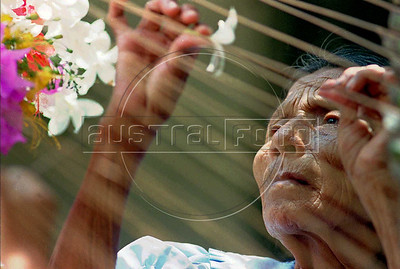 """A woman threads a flower onto a stripped palm leaf spine Sunday, May 5, 1996 in preparation for the """"Celebration of the Palms"""" procession in Panchimalco, El Salvador. The procession, one of few remaining pre-Colombian customs left in Salvador, is to pray for the arrival of the summer rains.(Australfoto/Douglas Engle)  (This photo received an Award of Excellence in the 1996 Pictures of the Year of the National Press Photographers Association)"""