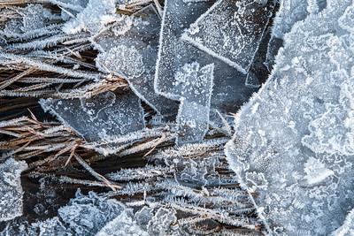 Frost and Ice Close Up