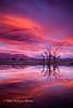 Sunrise Over the Tablelands
