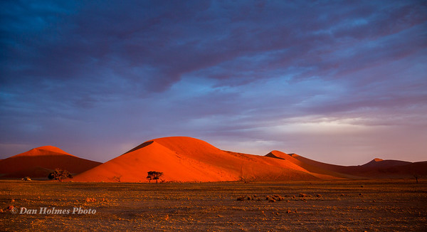 The Sands of Namibia