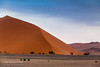 Tsauchab Valley Dunes