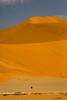Ostrich & Dune