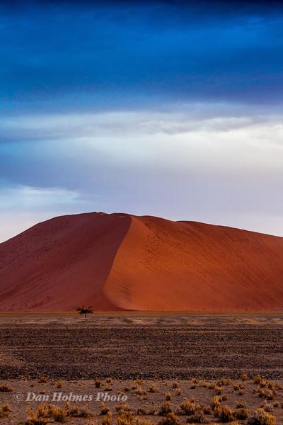 Gravel Plain and Dune