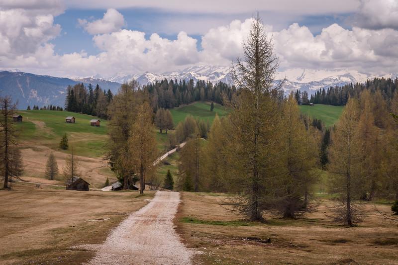 the empty road    südtirol, italia