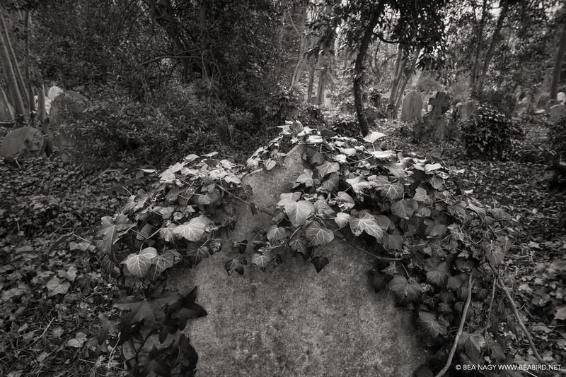 Highgate Cemetery, London