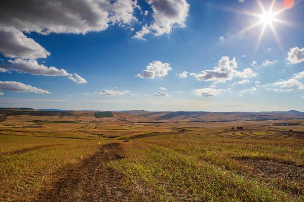 The landscape of Puglia surrounding the Vagnari excavations.