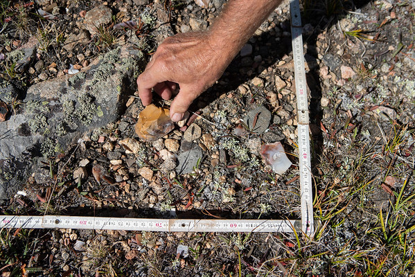 An archaeologist maps a dense concentration of chert debitage. This particular area had over 1,000 stone flakes from tool production.