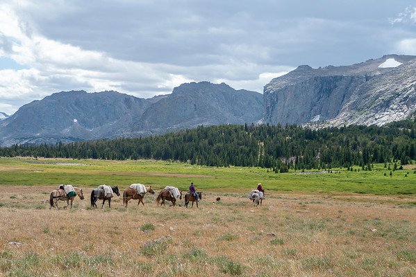 Outfitters use horses and mules to transport the teams equipment deep into the Wind River Mountains.
