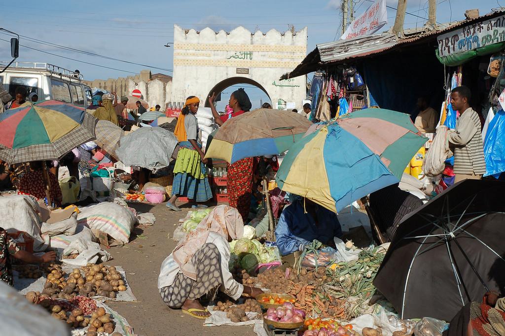 Harar est une ville fortifiée. La ville est située dans un endroit qui offre une vue magnifique de la campagne environnante : le vaste désert du Danakil au nord, les montagnes fertiles de Harar à l'ouest, et les plaines couvertes de bétail de l'Ogaden au Sud. <br /> Avec ses 999 mosquées, on la considère comme le quatrième lieu le plus sacré du monde Islamique après la Mecque, la Médina et le Dôme du Rocher à Jérusalem.<br /> La place du marché, si vibrante, est considérée comme l'une des plus colorées de toute l'Ethiopie. La ville est souvent victime de coupures de courant (il en a eu une chaque jour durant mon séjour là-bas). J'étais sur le marché, après la tombée de la nuit, alors qu'il n'y avait pas d'électricité, nulle part en ville, quand j'ai pu trouver de la nourriture chaude et délicieuse vendue à des étals où l'on cuisinait sur des feux de charbon de bois.<br /> « L'homme hyène » récolte les déchets et les os auprès des bouchers de la ville pour nourrir les hyènes sauvages devant la porte de Fallana, sise dans les murs de la vieille ville. Les hyènes arrivent juste après la tombée de la nuit, et viennent lui manger dans les mains.