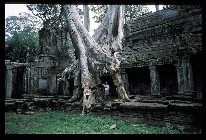 """""""Voyage a Phnom Penh""""<br /> Je quittai la ville de nuit, à 4:30h du matin, et me fis emmener par moto à la rivière. Les routes se faisaient de plus en plus étroites, jusqu'à n'être plus que des pistes de boue. C'était le début de la saison des pluies. Les bruits de la jungle étaient en train de changer, du refrain nocturne à celui du petit matin. Les villages s'éveillaient au fur et à mesure que nous les traversions. Nous arrivâmes enfin à un endroit où la route plongeait tout simplement dans la rivière. Il était à présent 7:30. Je pris un canoë (creusé dans un tronc) sur 15 kilomètres de rivière, en direction du lac que j'allais traverser dans un bateau à moteur. Comme les Khmer Rouge étaient encore réputés actifs dans cette région, on me dit de rester sous le pont au cas où il y aurait des coups de feu. Avant que le bateau ne parte, je laissai à un officier mes coordonnées: la bureaucracie semblait impressionnante jusqu'a ce que l'on vous dise que c'était juste """"au cas où"""" votre bateau ne parvenait pas à Phnom Penh."""
