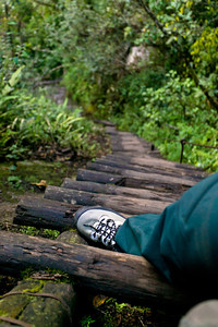 Not for the faint of heart or those scared of heights! Sturdy shoes are a must on this often wet and mossy trail.