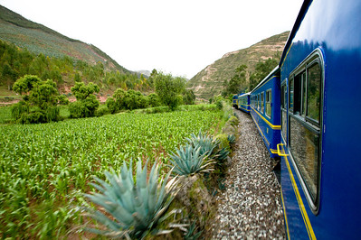 The train winds its way towards Aguas Calientes through farmland, pastures, valleys and mountains.