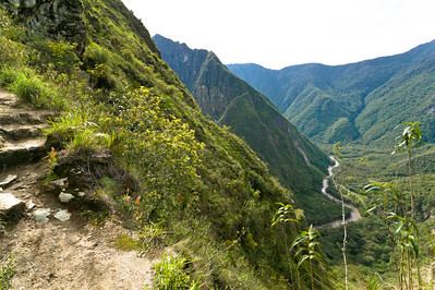 A narrow part of the trail overlooks the Urabamba river snaking through the jungle.