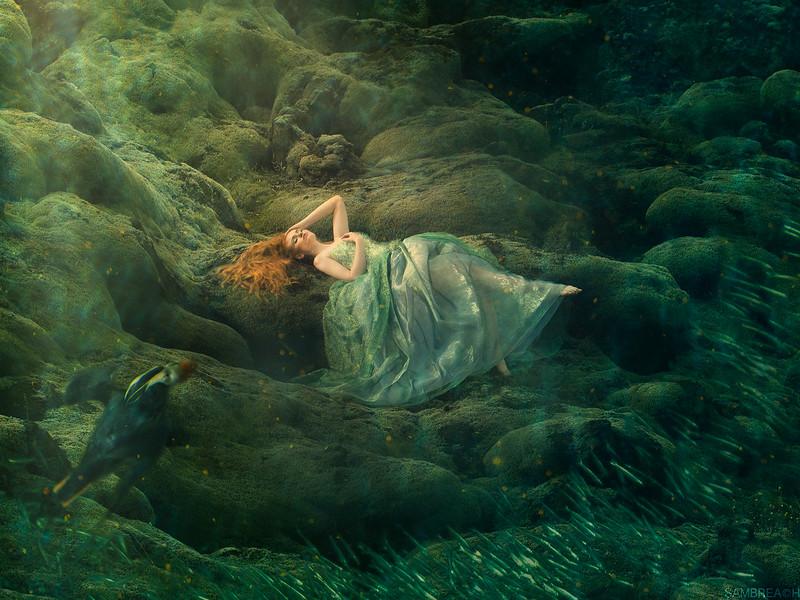 """""""Falling Deep"""" by Sam Breach"""