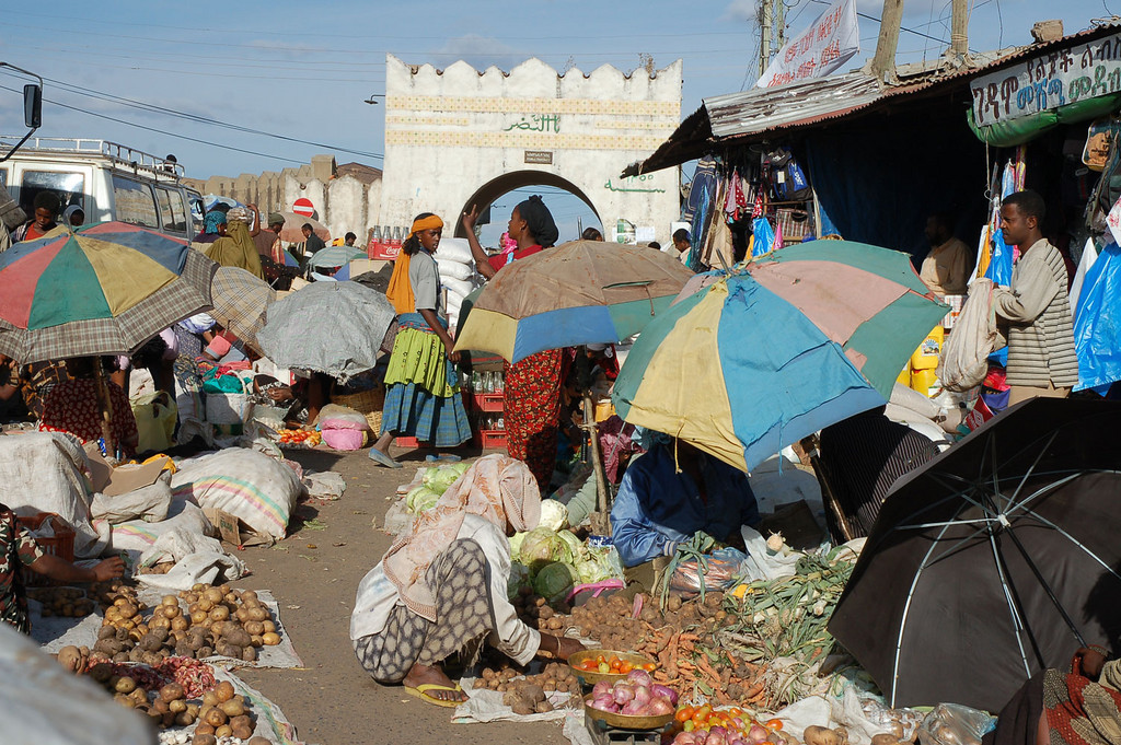 "Harar is a walled city the location gives wonderful views of the surrounding country - the vast Danakil desert to the north, the fertile Harar mountains to the west, & the cattle rich plains to the south. With its 999 mosques, it is considered to be the fourth most holy city in Islam after Mecca, Medina and the Dome of the Rock in Jerusalem. The vibrant market place is regarded as one of the most colourful in Ethiopia. The city suffers from frequent power cuts, (every night I was there) It was in the market where after dark when there was no electricity anywhere in the city, that I was able to find delicious hot  food from the many stalls using charcoal fires. The ""Hyena Man"" collects offal and bones from the cities butchers to feed to the wild hyenas outside the Gate of the old city walls. Hyenas appear just after sunset to take food from his hands."