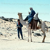 Camel transport in the Sahara