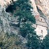 St. Mary Monastery