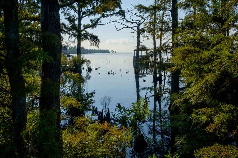 The Pasquotank River