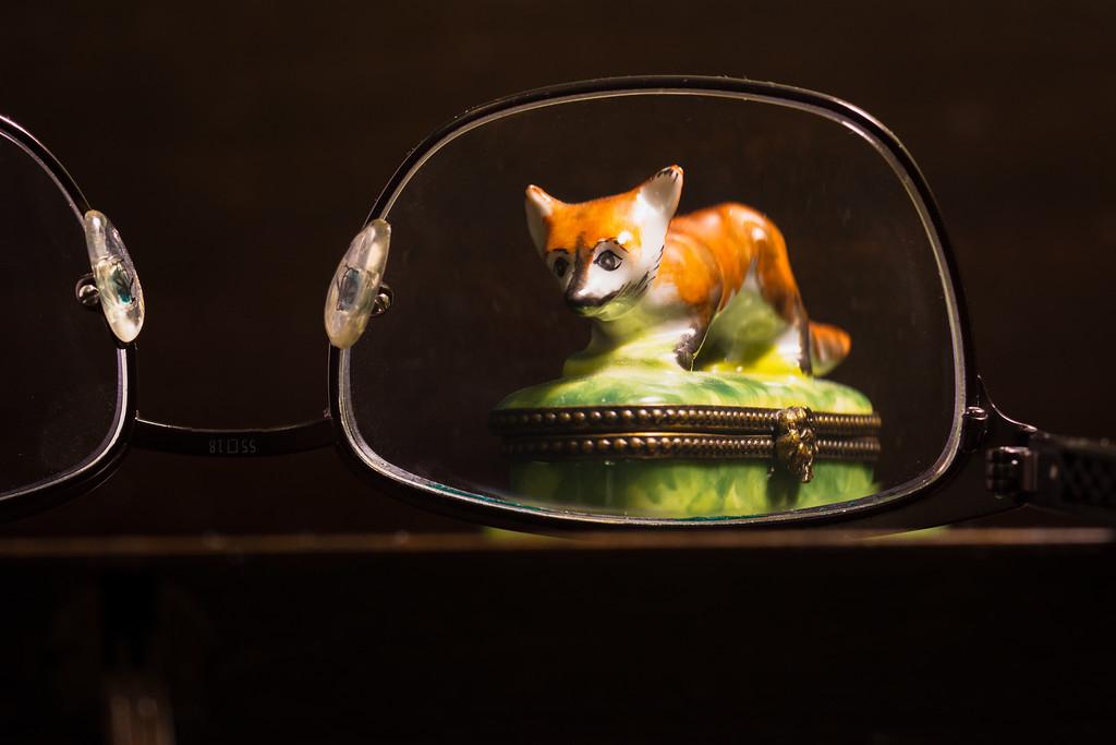 Fox on the table